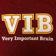 VIB SHIRTS are here!